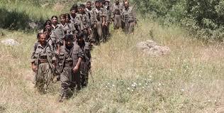 Photo of یادداشت وارده/ تاثیر کرونا بر جنگ ترکیه و نیروهای ی.پ.گ